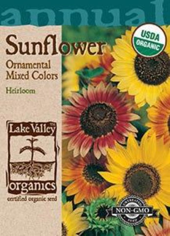 Organic Sunflower Ornamental Dwarf  Mixed Colors
