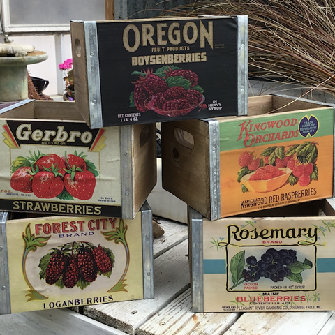 PHC Assorted Berry Boxes
