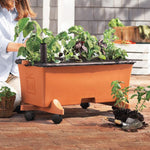Earthbox® Garden Kit Terra Cotta