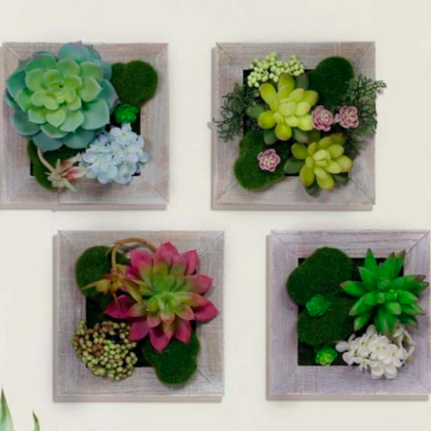 Alpine Succulent Wooden Frame Wall Hanging
