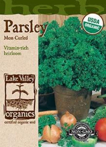 Organic PARSLEY MOSS CURLED