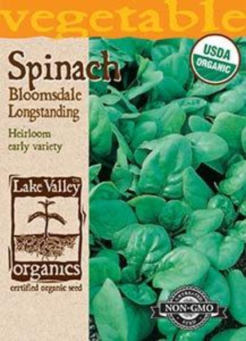Organic Spinach Bloomsdale Longstanding Heirloom