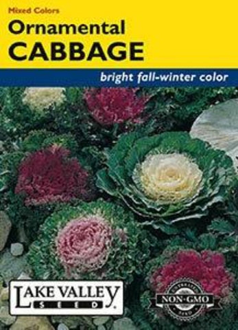 Cabbage Ornamental Mixed Colors