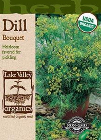 Organic Dill Bouquet Heirloom