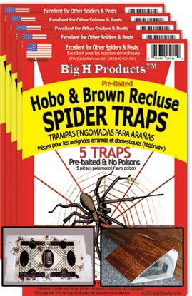 Brown Recluse & Indoor Spider Trap