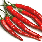 Cayenne Long Thin Hot Pepper