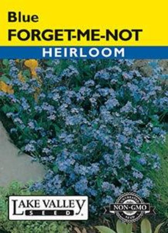 Forget-Me-Not Blue Heirloom