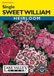 Sweet William Single Mixed Colors