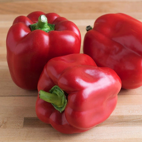 'Red Knight' Sweet Pepper