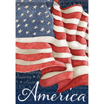 Carson_ Waving Flag Dura Soft™ Large Flag