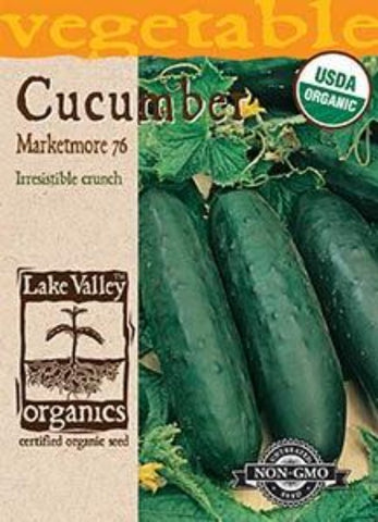 Organic Cucumber Marketmore 76 Heirloom