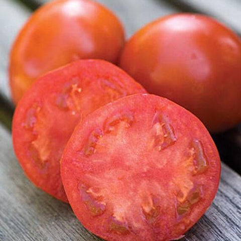 Sweet Seedless Tomato