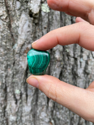 Natural Malachite Polished Tumble Stone Natural Crystal Green Stone Heart Opener Chakra Stone Stone of Transformation