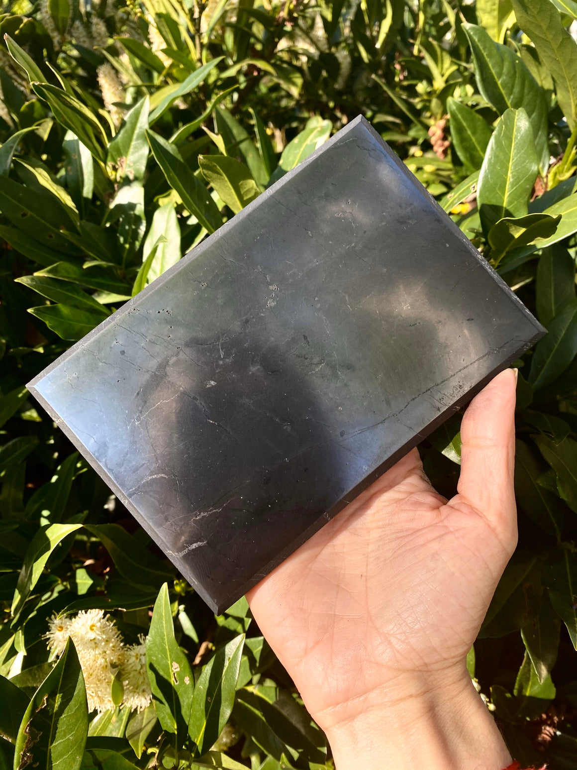 "Large Shungite EMF Protective Plate for Cellphone or Laptop / Size 4""X6""/ shungite Plate / Pure Russian Shungite"