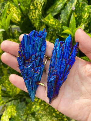 Aura kyanite Wings - Blue Peacock kyanite - Raw Kyanite - Kyanite - Rainbow Peacock Kyanite Blades - protection  grounding stone