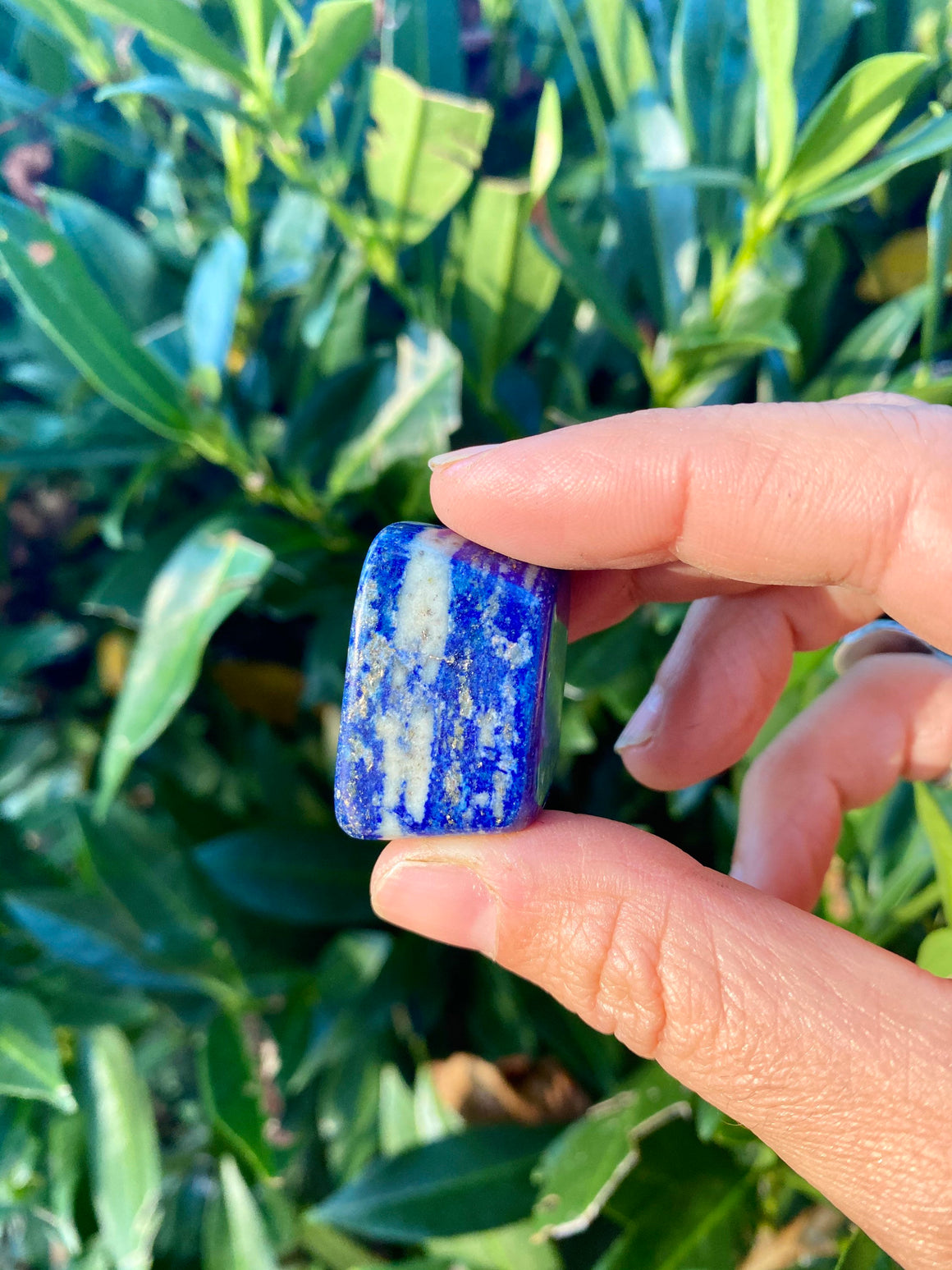 High Quality Lapis Lazuli Small Polished Tumbled Stone / psychic third eye stone / Awareness / Inner Wisdom l