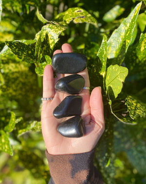 Large Shungite Polished Tumble Stone / Protection From EMFs (Electromagnetic Frequency) /Detoxifying / High Quality Mineral From Russia