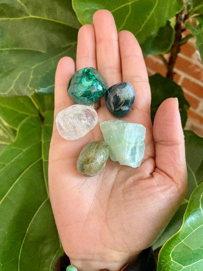 Immunity Support Crystal Bundle