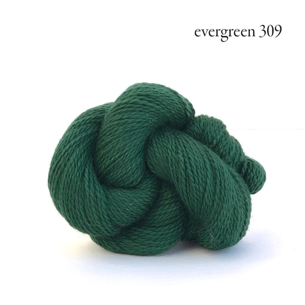 Andorra Evergreen 309