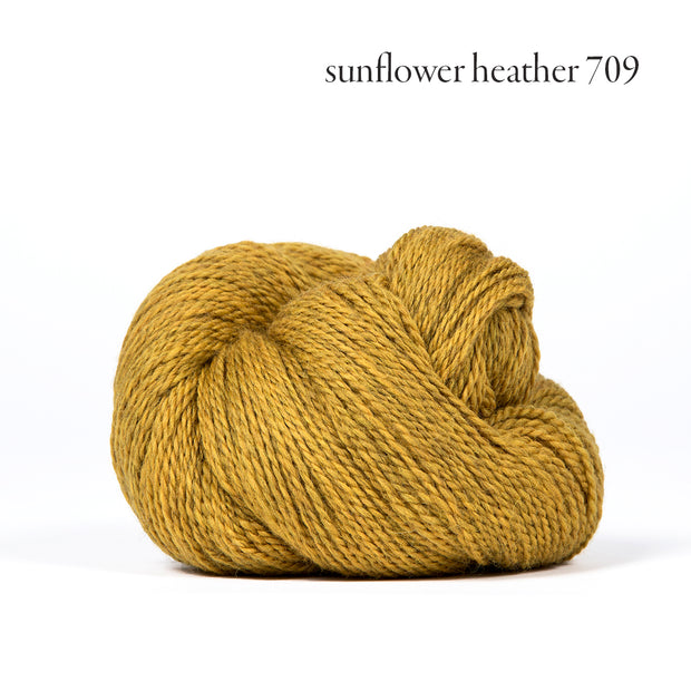 Scout Sunflower Heather 709