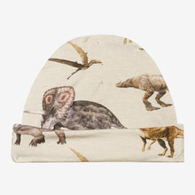 Load image into Gallery viewer, Posh Peanut Swaddle and Beanie Set in Vintage Dino