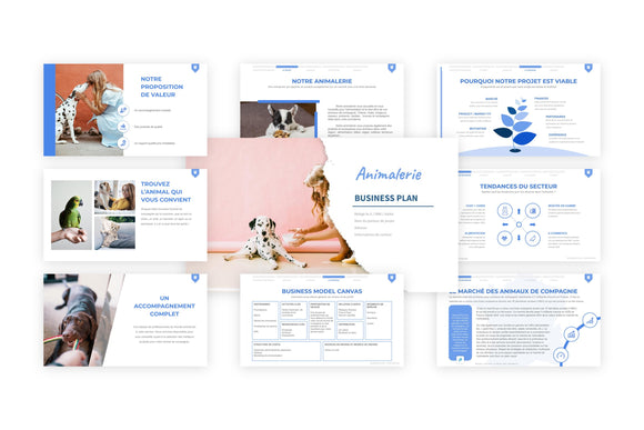 Animalerie Business Plan modele