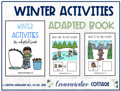 Winter Activities: Adapted Book