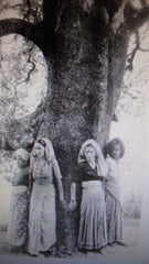 Chipko Tree-huggers