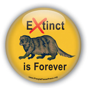 Extinct is Forever - Wolverine Conservation Button/Magnet