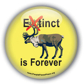 Extinct is Forever - Caribou Button/Magnet