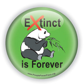 Extinct is Forever - Panda Bear Button/Magnet
