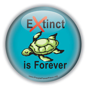 Extinct is Forever - Sea Turtle Button/Magnet