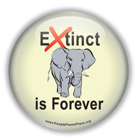 Extinct is Forever - Elephant Button/Magnet