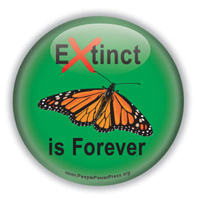 Extinct is Forever - Monarch Conservation