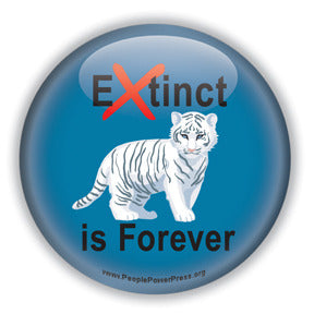 Extinct is Forever - Siberian Tiger Conservation Button/Magnet