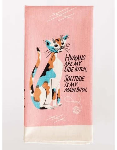 Super Absorbent and Kitty-Kat Kute dish towels
