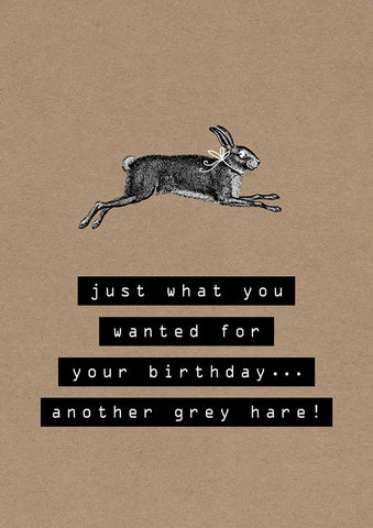 Birthday Humour Blank Card