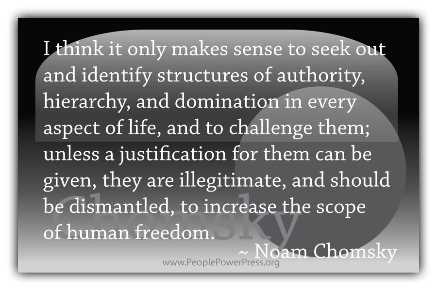 Noam Chomsky Quote - I think it only makes sense to seek out and identify structures.... - Black