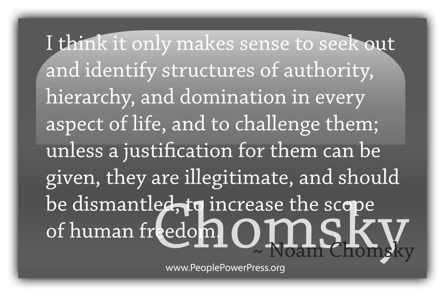 Noam Chomsky Quote - I think it only makes sense to seek out and identify structures.... - Grey