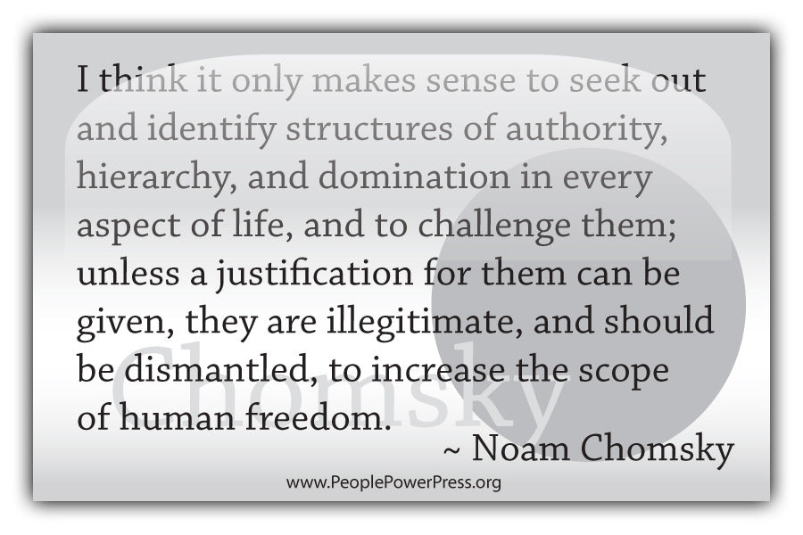 Noam Chomsky Quote - I think it only makes sense to seek out and identify structures.... - White