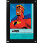 CLEARANCE: Comic Book display case - Wall mounted Display Frame for comics