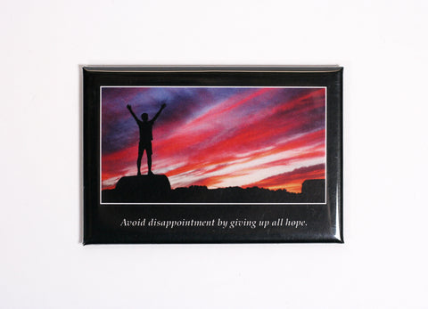 Not So Inspirational Quotes - Novelty Fridge Magnets