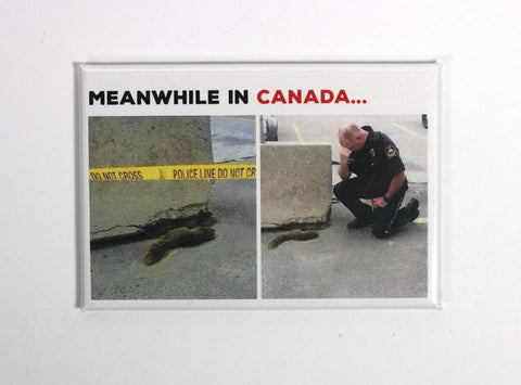 meanwhile in canada fridge magnet