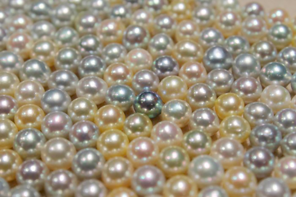 Akoya Pearls Come in a Rainbow of Colors