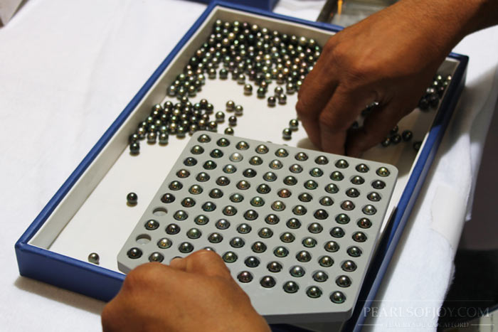 tray of carefully chosen Tahitian pearls