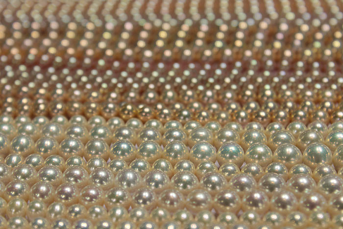 rows of beautiful metallic pearls