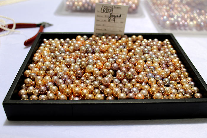 a tray of the fancy colored pearls