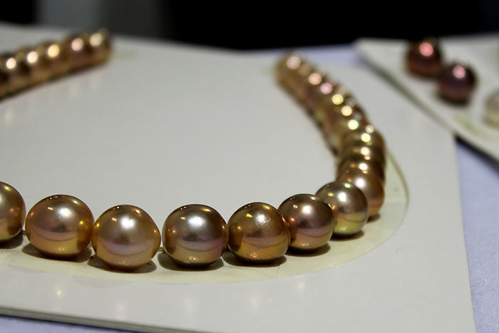 Edison pearl necklace with golden and purple overtones