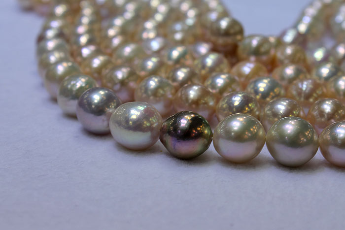 a single dark ripple pearl in the midst of lighter pearls