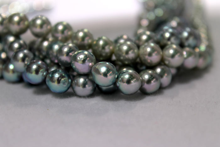close up of the dark blue Akoya pearls